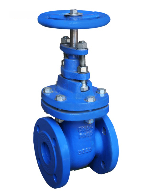 F5 Resilient Gate Valve